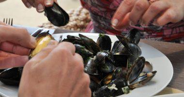 Mussels - credit Matt Jessop Visit Cornwall