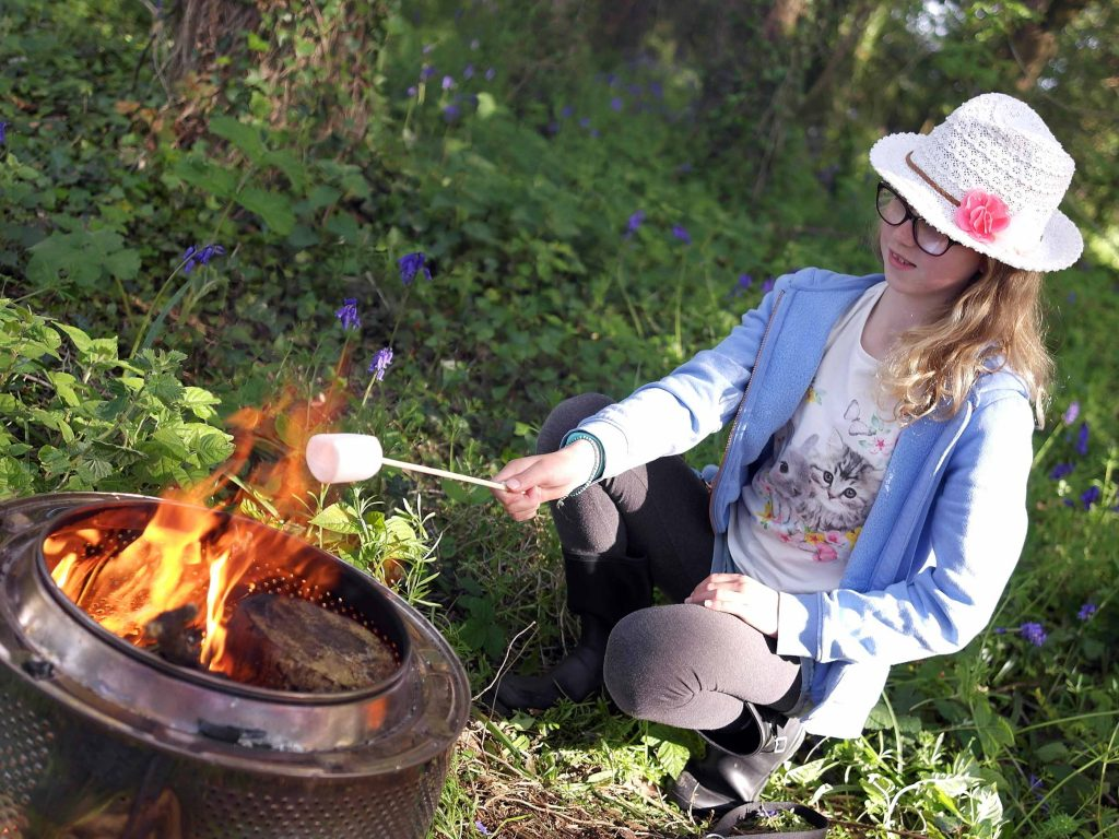 Wildflower Wood toasting marshmallows