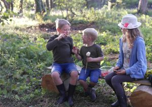 Wildflower Wood enjoying marshmallows