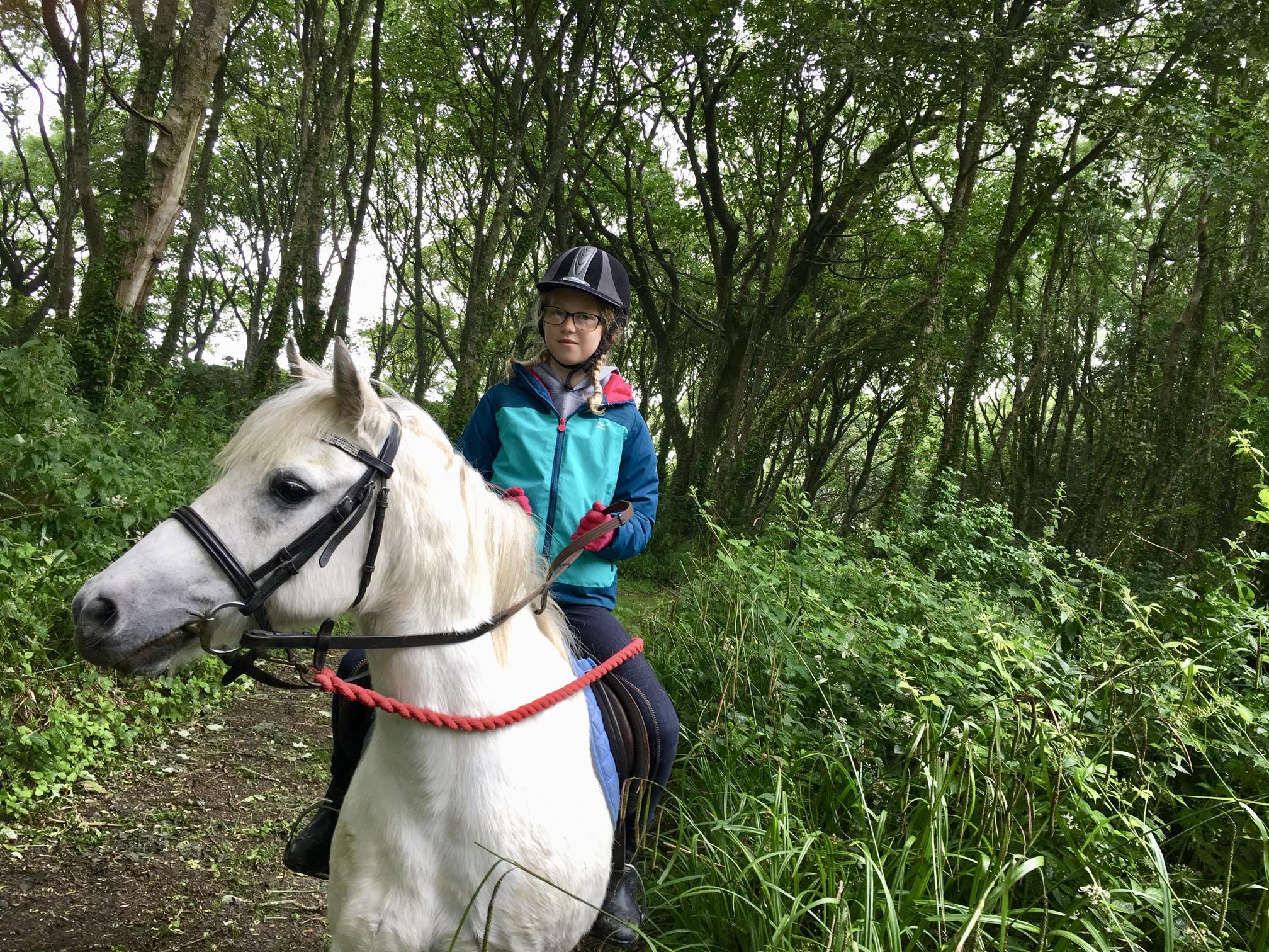 Pony riding through Wildflower Wood