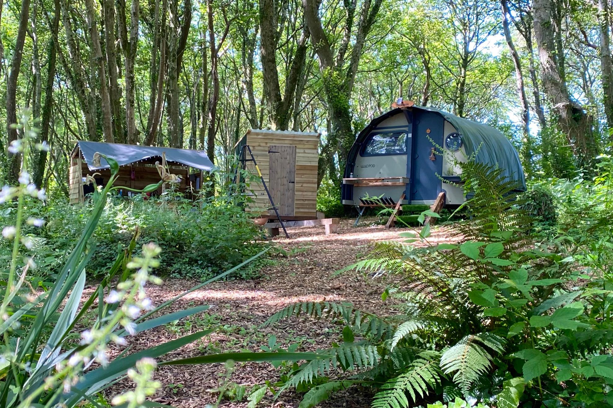 Trencrom Landpod in Wildflower Wood